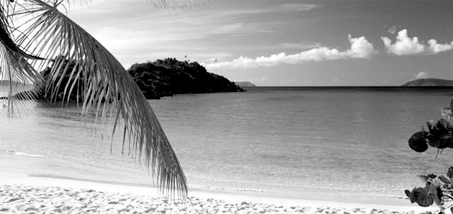 Caribbean_bermuda_law_jobs